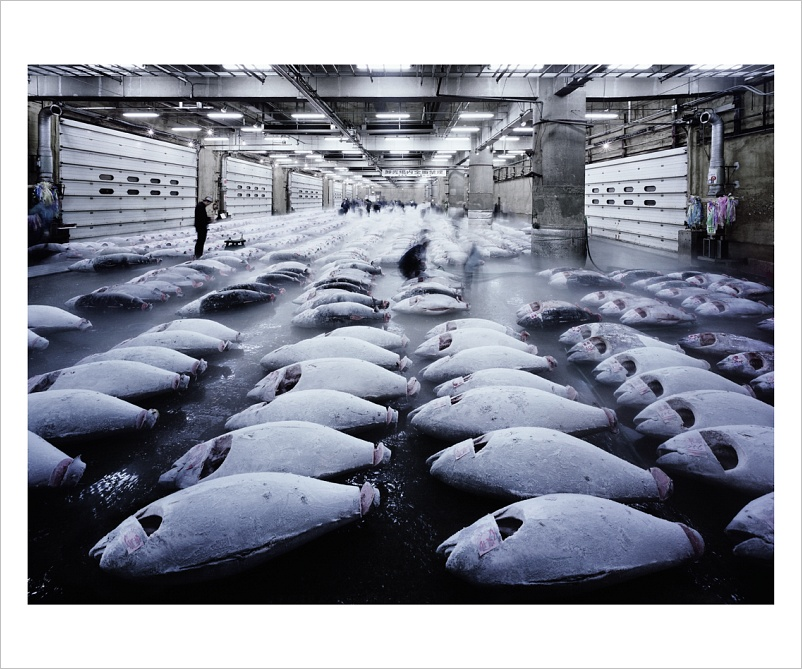 Ralf Kaspers: Tuna, Tokio 2007, 143 x 420 cm