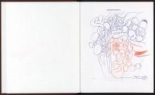 Nitsch : Das bildnerische Werk. - 1988