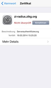 WLAN iOS Abb. 3