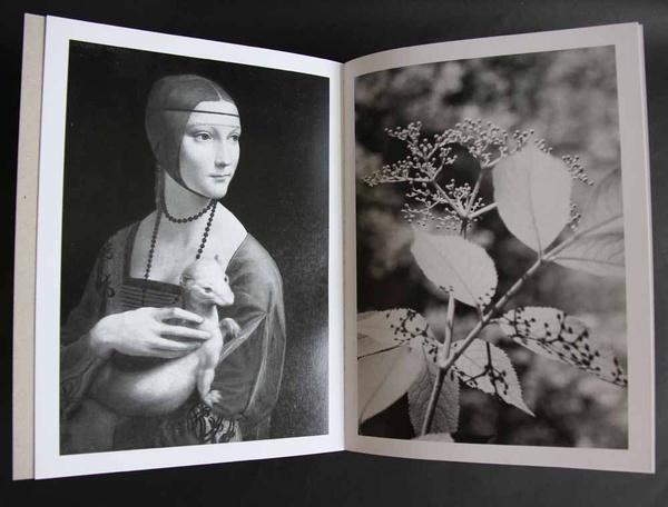 Laurence Aëgerter: Photographic treatment©. (2) D3-AEGE 740/65(1