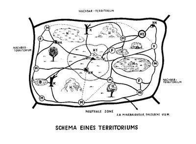 Heini Hediger: Schema eines Territoriums, Quelle: Zoo Zürich